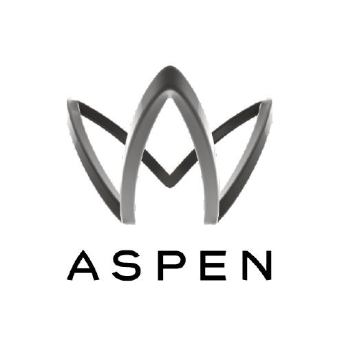 Insurance Partner Aspen